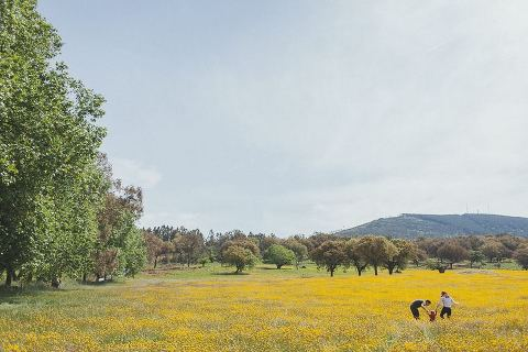 Countryside engagement session Spain flowers elopement